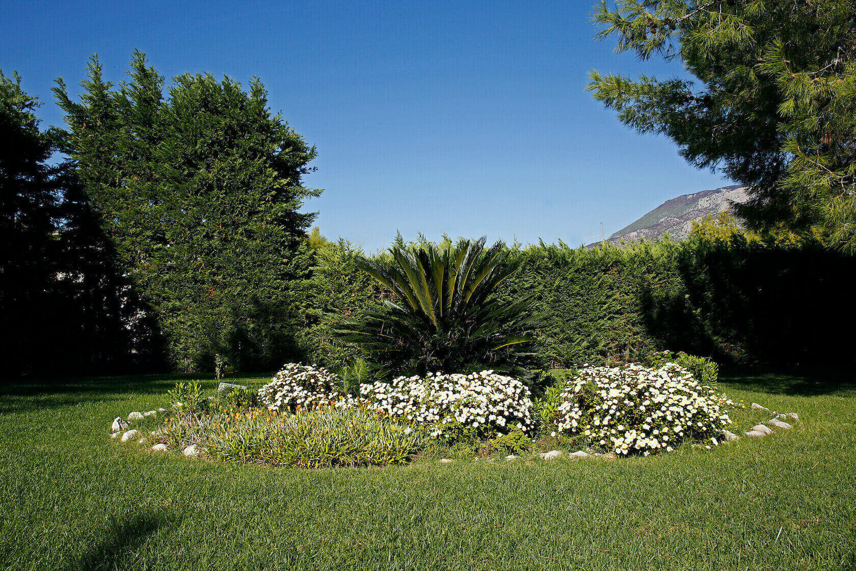 The Loutraki Green Villa private gardens, with trees, bushes and flowers.